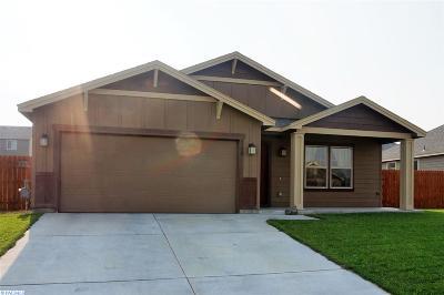 Pasco Single Family Home For Sale: 4120 Atlanta Ln