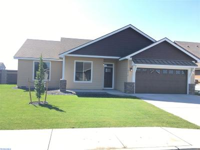 Pasco Single Family Home For Sale: Nka Silverbright Dr