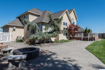 Richland Single Family Home For Sale: 1990 Sky Meadow Ave