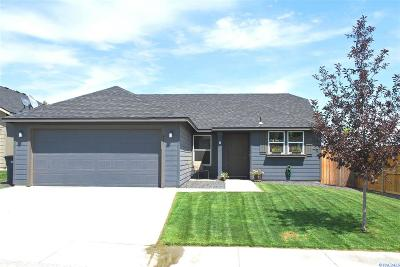 Kennewick Single Family Home For Sale: 487 S Utah St