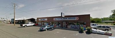 Pasco Commercial For Sale: 1124 W Ainsworth Street