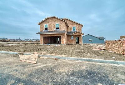 Pasco Single Family Home For Sale: 4305 Parley Drive