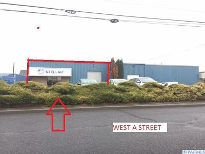 Pasco Commercial For Sale: 2021 W A Street