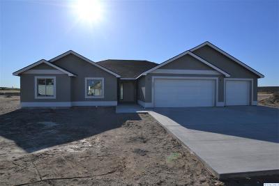 Pasco Single Family Home For Sale: 4307 Goldstream Ln