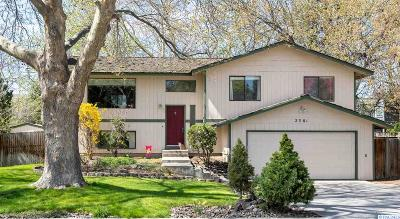 Richland Single Family Home For Sale: 2381 Carriage Ave