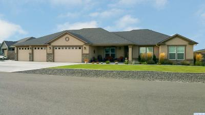 Pasco Single Family Home For Sale: 11301 Woodsman Dr