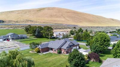 West Richland Single Family Home For Sale: 3902 S Highlands Blvd.