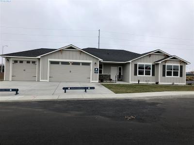 Pasco Single Family Home For Sale: 3202 Lapis Ln.