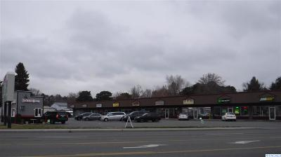 West Richland Commercial For Sale: 4033 W Van Giesen #F