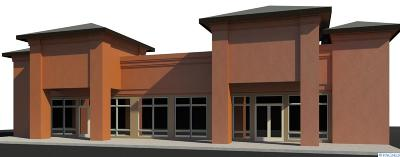Pasco Commercial For Sale: 3103 N 68