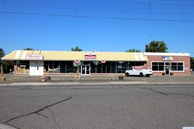 Richland Commercial For Sale: 1019 Wright Ave