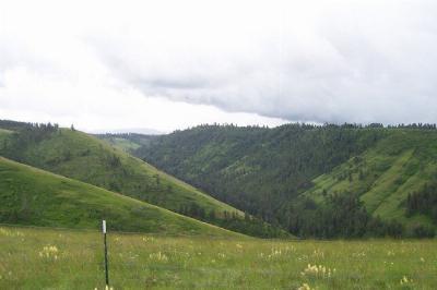 Waitsburg Residential Lots & Land For Sale: 5983 Jasper Mountain Road
