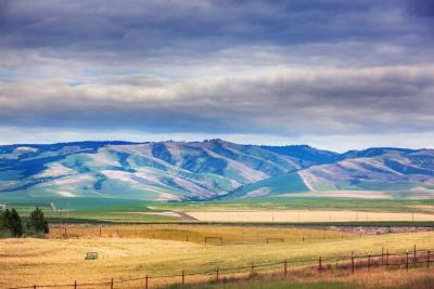 Walla Walla Residential Lots & Land For Sale: 936 Summers Circle