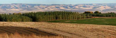 Walla Walla WA Residential Lots & Land Sold: $199,500