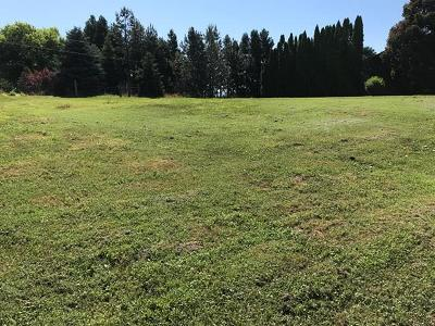 College Place Residential Lots & Land For Sale: 286 Maple Avenue