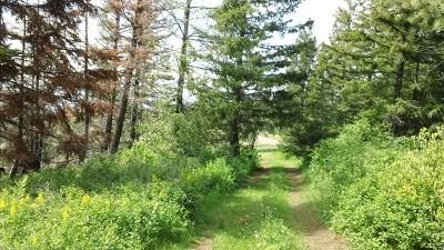 Walla Walla Residential Lots & Land For Sale: 5134 Blacksnake Ridge Road