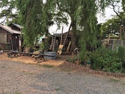 Dayton Single Family Home For Sale: 600 Harlem Road