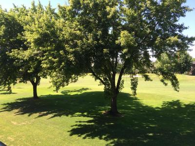 Yakima Condo/Townhouse For Sale: 8905 Occidental Rd #203