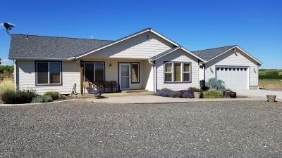 Zillah Single Family Home For Sale: 431 Division Rd