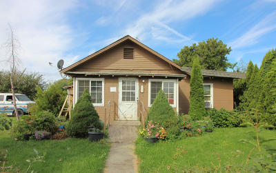 Single Family Home For Sale: 611 S Division St