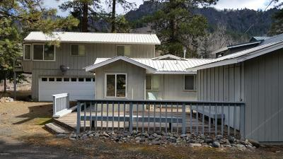 Naches Single Family Home For Sale: 31 Pine Shore Dr