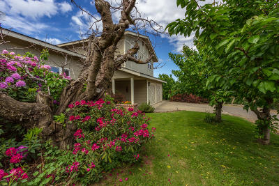 Yakima Single Family Home For Sale: 1207 Pecks Canyon Rd