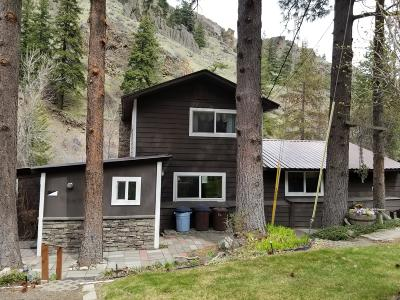 Naches Single Family Home For Sale: 401 Sentinel Creek Ln