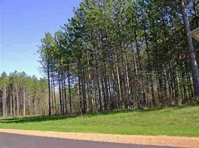 Wausau WI Residential Lots & Land Sold: $29,000