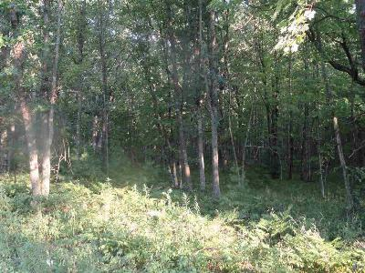 Iola Residential Lots & Land For Sale: Lot 1 Woodberry Acres