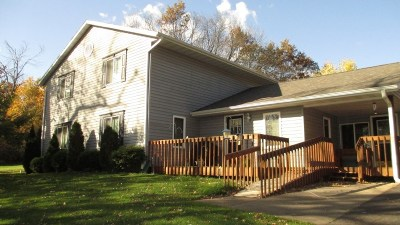 Amherst Single Family Home For Sale: 9434 County Road K