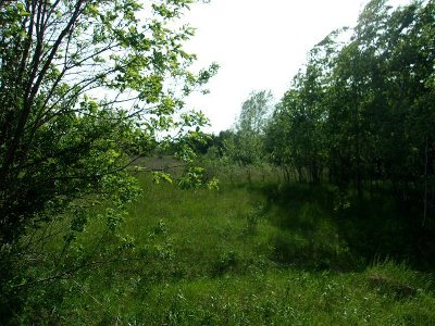 Residential Lots & Land For Sale: Lot 35 Lake Drive
