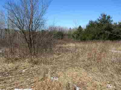 Stevens Point Residential Lots & Land For Sale: 804 Second Street North