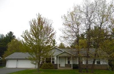 Mosinee Single Family Home For Sale: 1124 Avanti Drive
