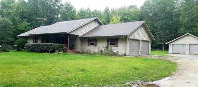 Iola Single Family Home Active - With Offer: N9216 Betsy Lane