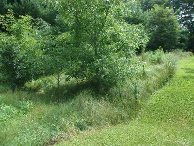 Residential Lots & Land For Sale: E 1810 Lake Shore Drive