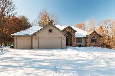 Wisconsin Rapids Single Family Home Active-Bump: 8341 Tower Road