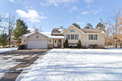 Mosinee Single Family Home Active - With Offer: 2101 Dorie Lane