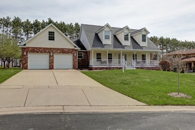 Wausau Single Family Home For Sale: 1717 Mulligan Drive