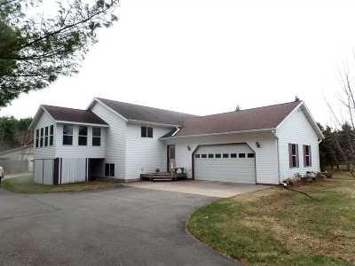 Merrill Single Family Home For Sale: W5745 Diana Circle Drive