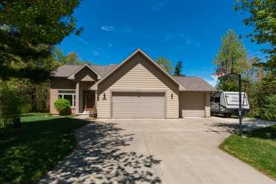 Stevens Point Single Family Home For Sale: 4808 Whitetail Drive