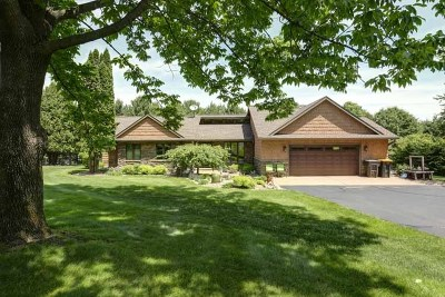 Mosinee Single Family Home For Sale: 1650 Church Road