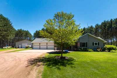 Stevens Point Single Family Home For Sale: 3119 Boy Scout Lane