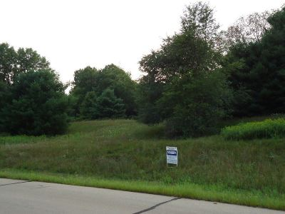 Iola Residential Lots & Land For Sale: Lot 20 Thorsen Trail