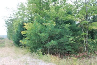 Wisconsin Rapids Residential Lots & Land For Sale: 39.53 Acres Lonesome Road
