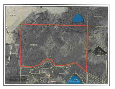 Medford Residential Lots & Land For Sale: Lake Ridge Drive