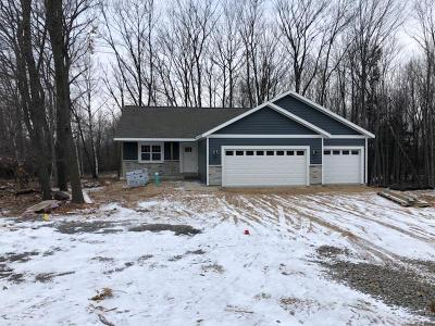 Wausau WI Single Family Home For Sale: $254,000
