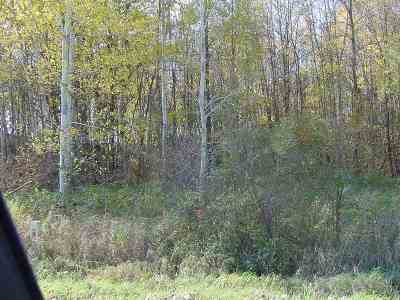 Withee Residential Lots & Land For Sale: Fairground Avenue