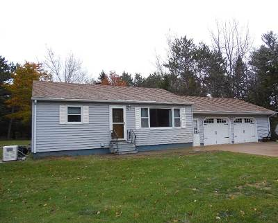 Merrill Single Family Home Active - With Offer: N2416 Lake Pesobic Road