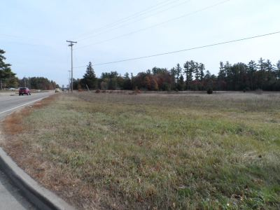 Wisconsin Rapids Residential Lots & Land For Sale: 27.5 Acres Plover Road