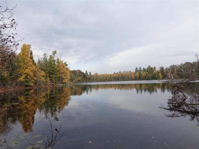Medford Residential Lots & Land Active - With Offer: +/-22.81 Acres Lake 19 Road